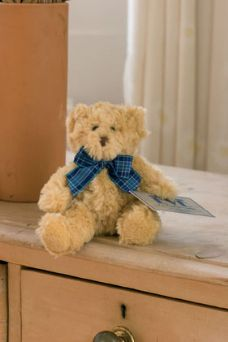 Bertie Bear With Concealed Hand Clip