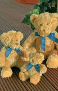 Bracken bear with blue/white check ribbon